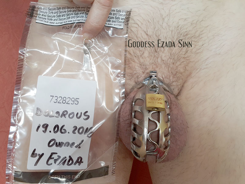 Chastity inspection with Tamper Evident Bank Bags (example)