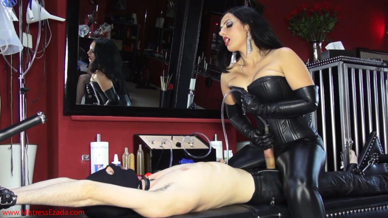 Facesitting femdom worship tube videos