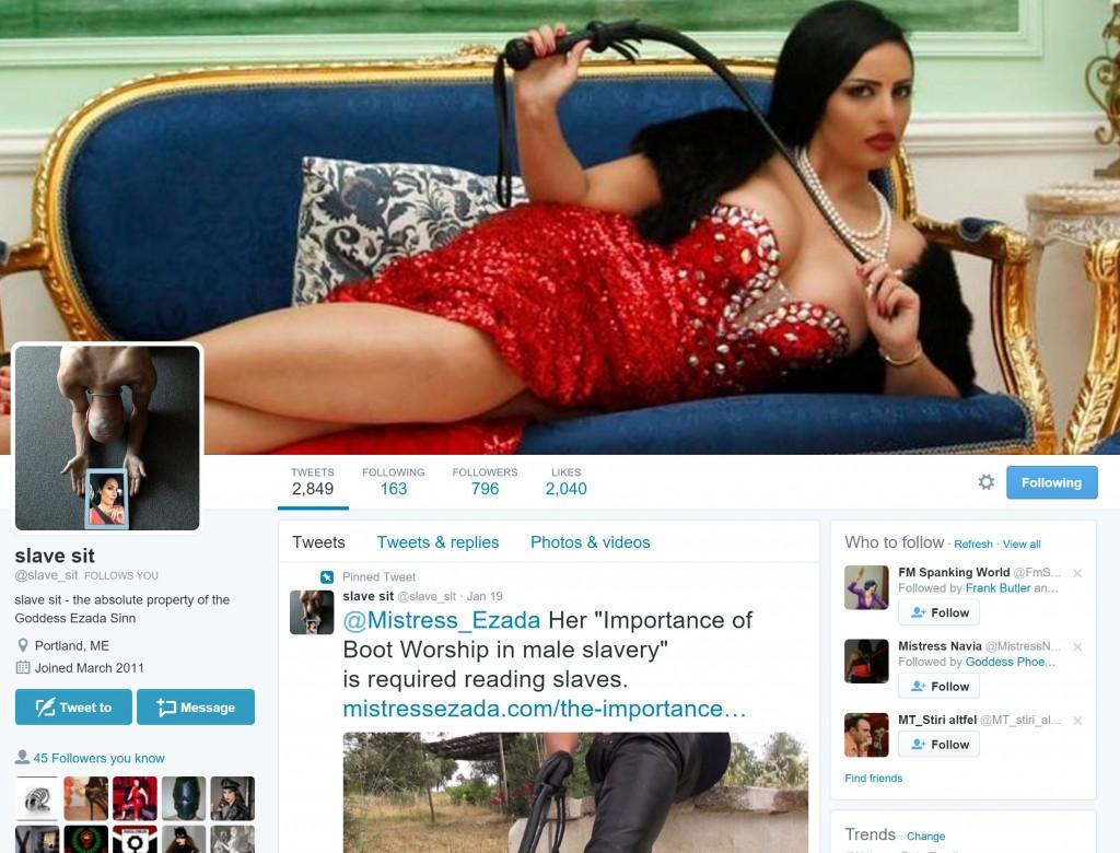 Twitter slave profile