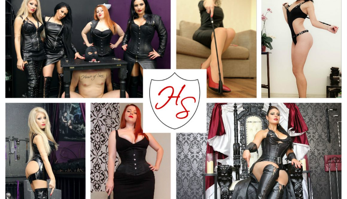 House of Sinn breaks into Clips4Sale #Top50 studio rankings.