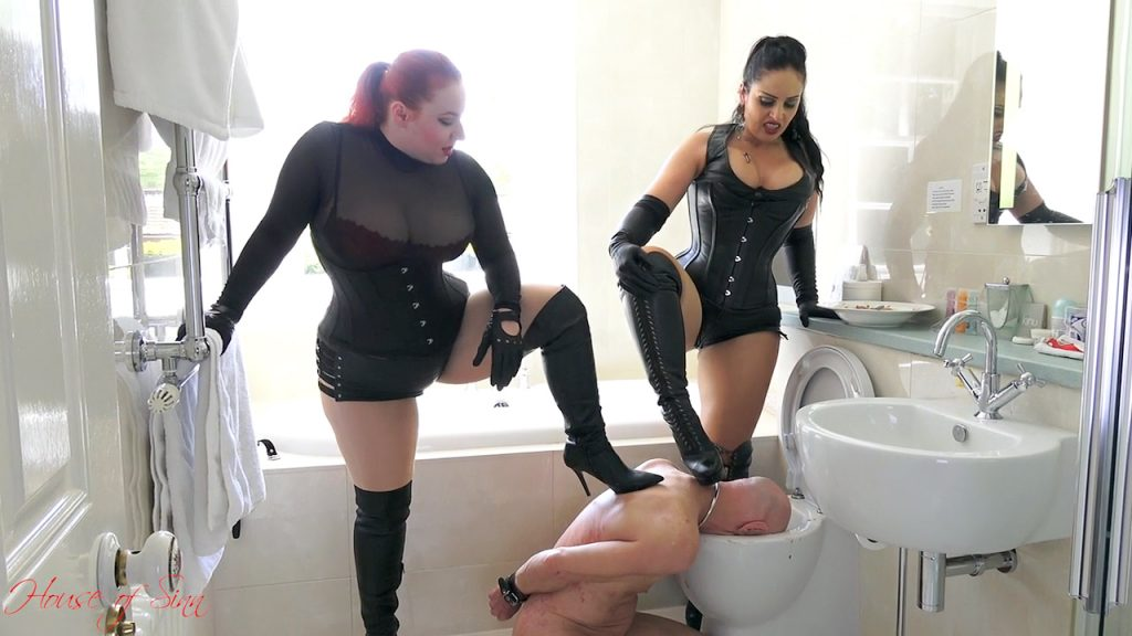hos-feeding-in-the-toilet-custom-50
